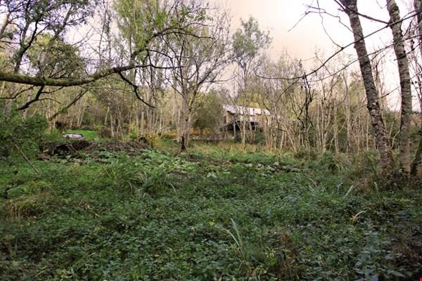 Residential Development Opportunity Near Treetops Dull